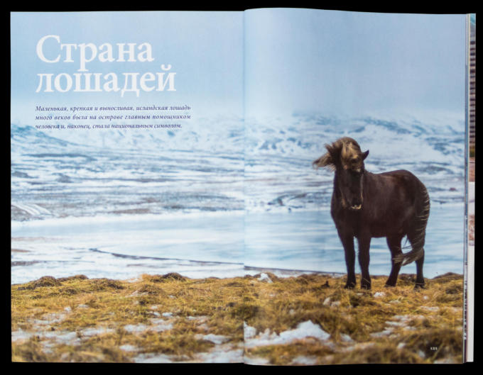 NG-Russia-Iceland-Horse-2015-11