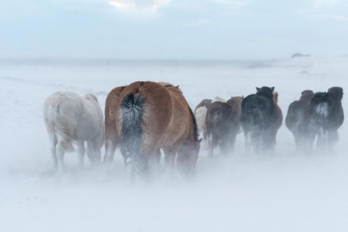 Iceland-2014