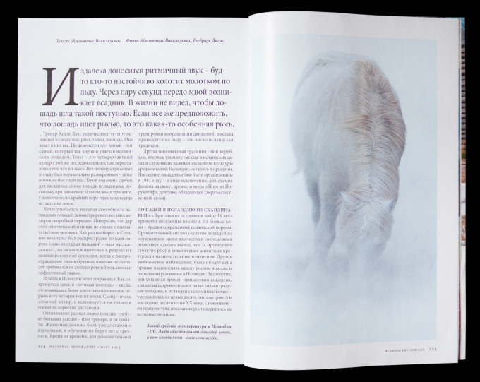 NG-Russia-Iceland-Horse-2015-13